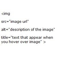 Image Alt Tags Checker