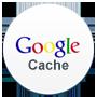 Google Cache Checke